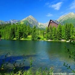 Ako urobiť zo Slovenska najbohatšiu krajinu na svete?